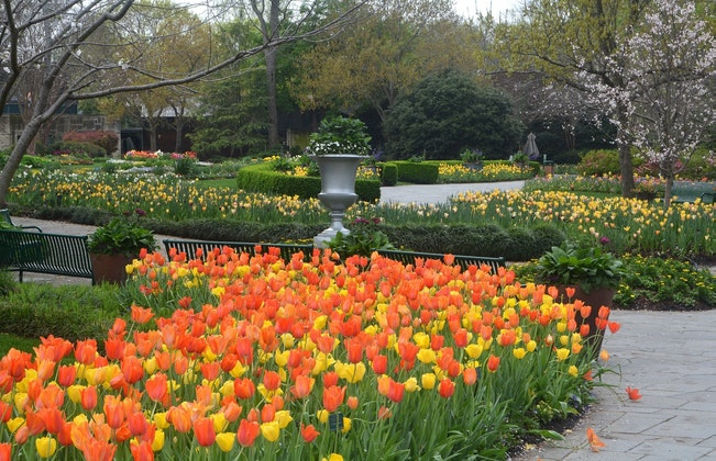 The Dallas Arboretum: A virtual display of these incredible gardens!