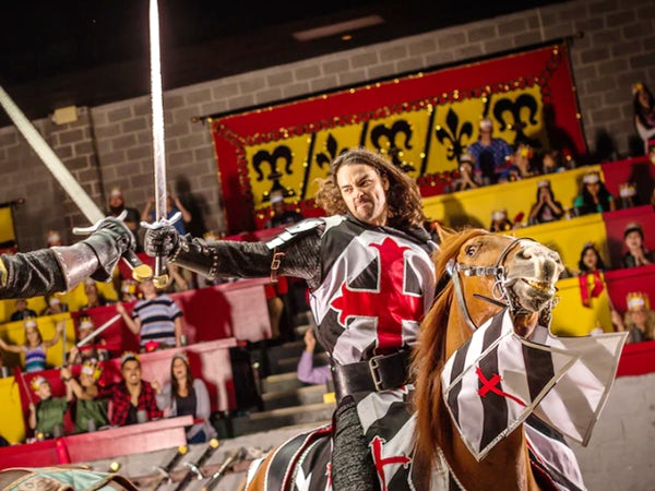 medieval times dallas dinner tournament 4 things to know
