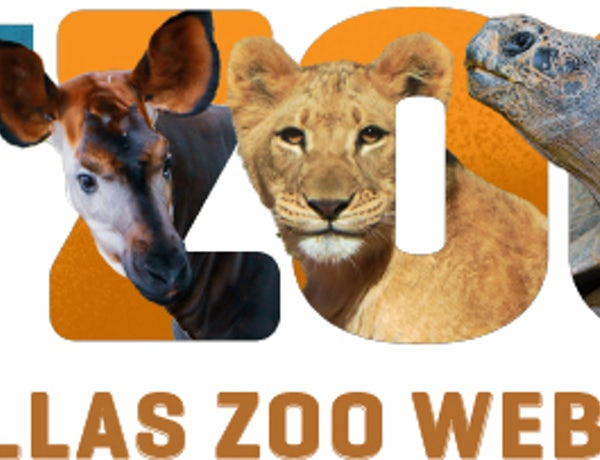 Bringing the Dallas Zoo To You- at Home!
