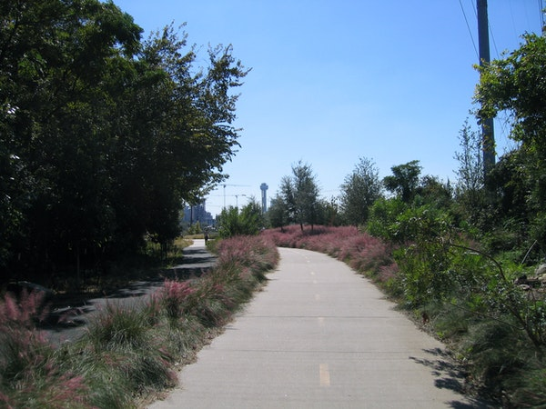 Lots of Things To Do With Dogs in Dallas Katy Trail Dallas