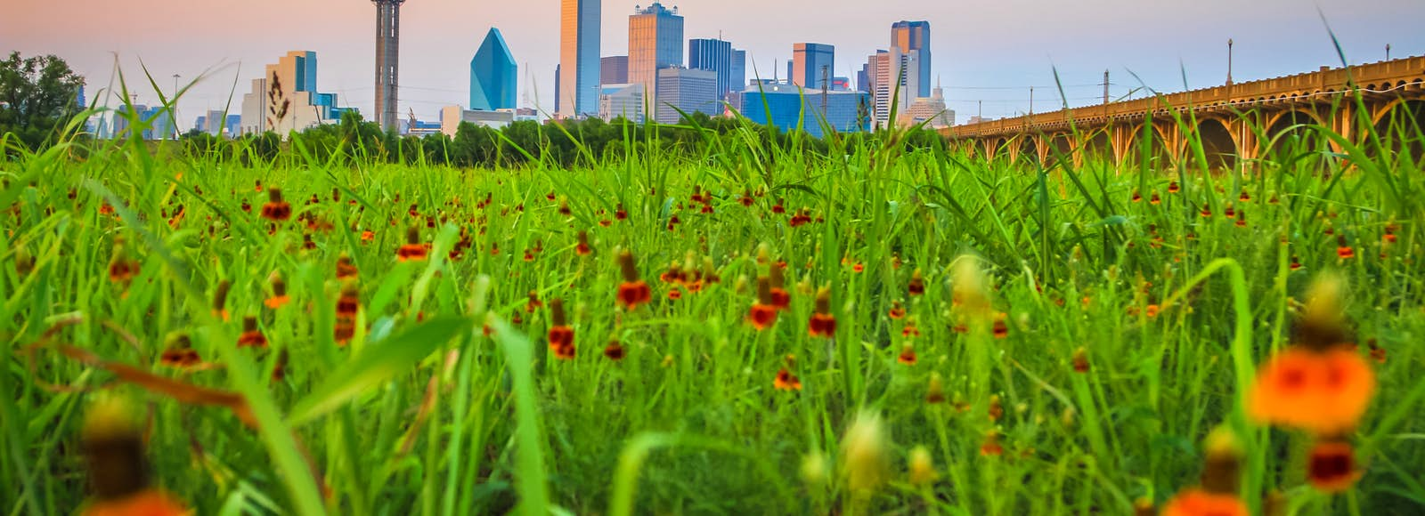 June 2017 Things To Do In Dallas 10 Top Picks