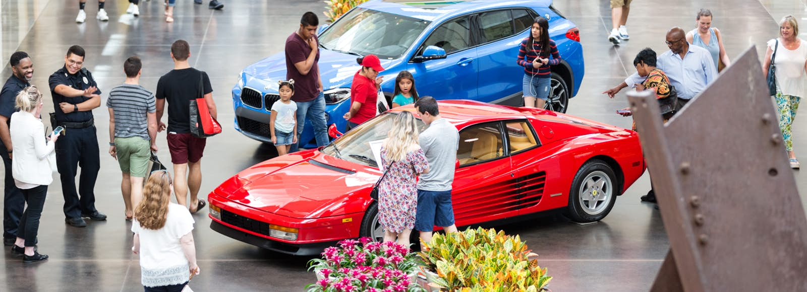 Auto Shows And Auctions In Dallas - Dallas car show