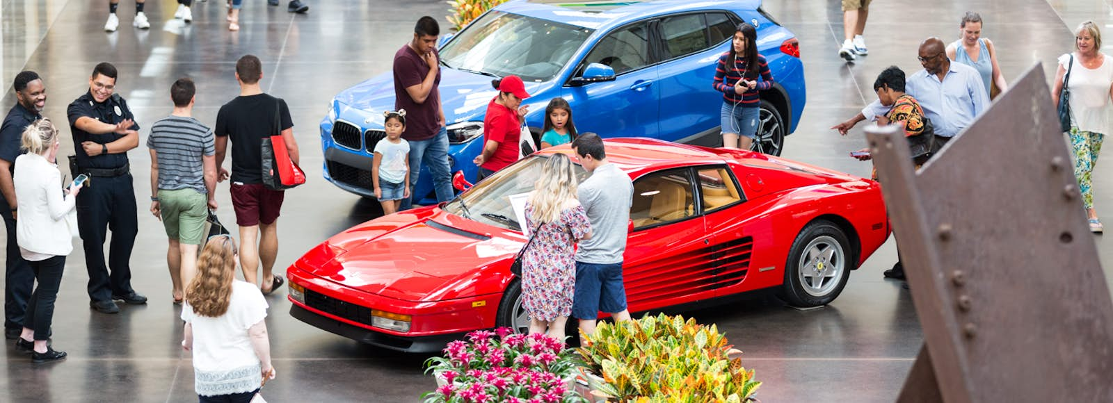 Auto Shows And Auctions In Dallas - Tex mex car show