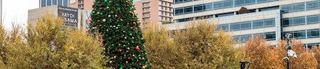 2018 Holiday Show and Tree Lighting at Klyde Warren Park