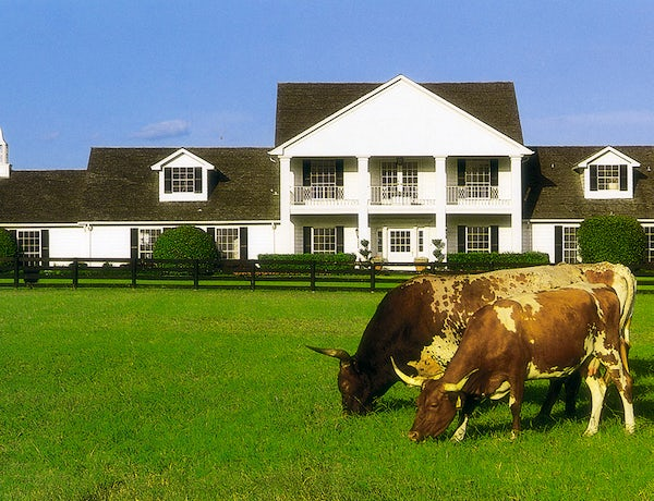 Dallas 40th Year Reunion: Southfork Fan Day
