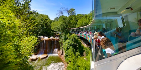 Get outside and enjoy the best zoos, gardens, and parks Dallas has to offer with these fun for the whole family and every budget events in Dallas