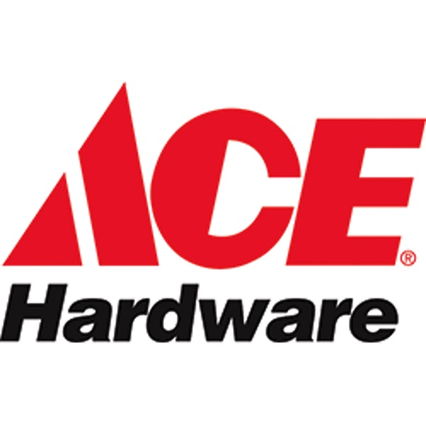 Ace 2021 Spring Convention Logo
