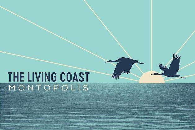 The Living Coast - Montopolis Live