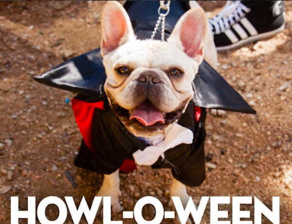 Mutts Hosts 5th Annual Howl-o-Ween Costume Contest
