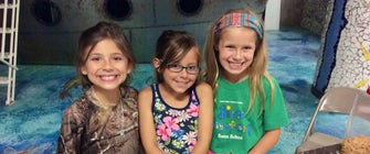 SPARK! Summer Camp: Box Fort Bonanza!