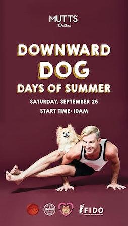Downward Dog Days of Summer