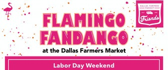 Flamingo Fandango