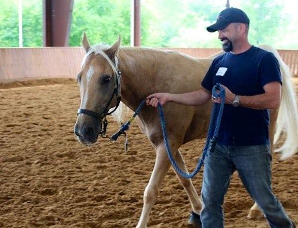 Equest's Free Horsemanship 101 for Veterans