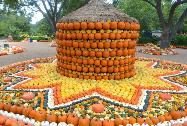 Autumn at the Arboretum 2021