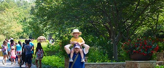 Father's Day Activities at the Dallas Arboretum