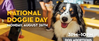 National Doggie Day at MUTTS Canine Cantina