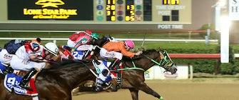 Quarter Horse Season at Lone Star Park