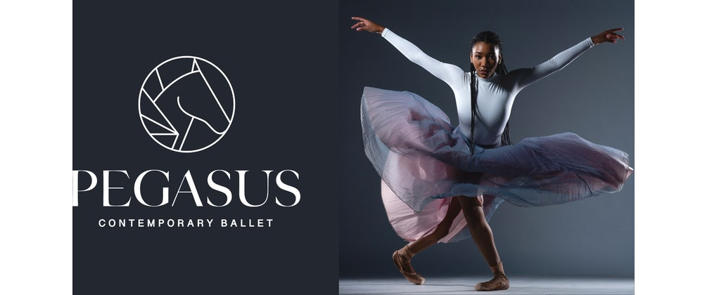 Take Flight: Pegasus Contemporary Ballet's Launch Party And Fundraiser