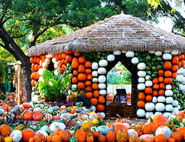 Autumn at the Arboretum features Adventures in Neverland