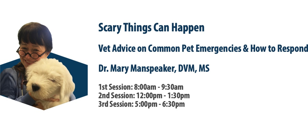 HOLLYWOOD FEED UNIVERSITY PRESENTS FREE ONLINE COURSE: VET ADVICE ON COMMON PET EMERGENCIES