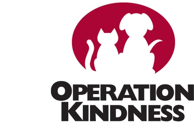 Join Operation Kindness' Countdown to Holiday Pet Adoptions